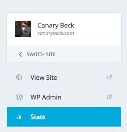 WordPress Stats on dashboard