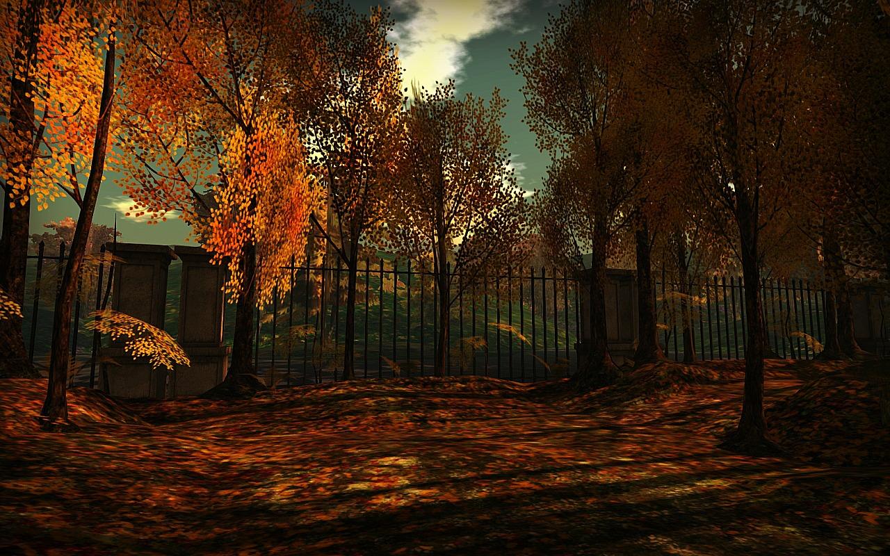 Autumn Shot_001